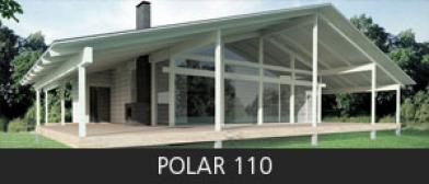Polar 110